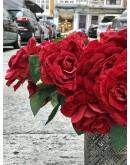 Rosas rojas de terciopelo