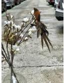 Pájaros de plumas
