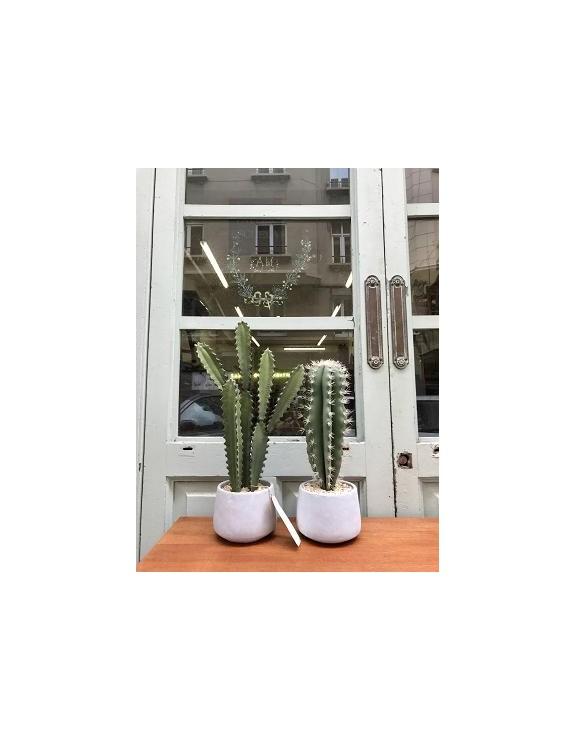 Cactus artificial en macetas.