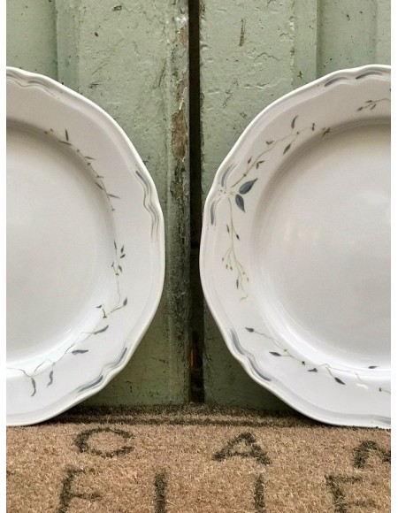Platos llanos de porcelana de Limoges
