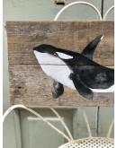 Orca pintada con acrílico sobre madera de deriva.