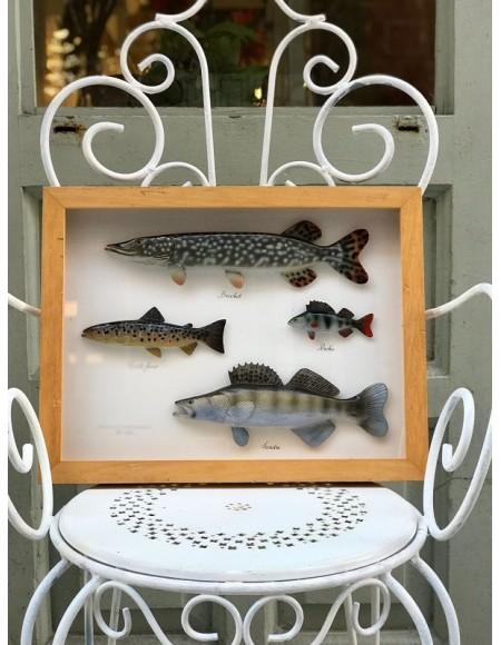 Cuadro francés con peces de terracita pintados a mano enmarcados en madera de cerezo